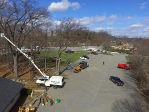 Kinnelon NJ Tree Cutting