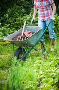 Spring Yardwork