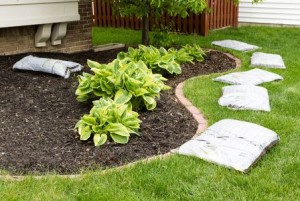 Summer Landscaping Tips
