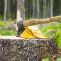 The Evolution of Tree Stump Removal Equipment