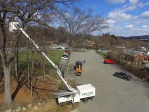 workers removing trees in Fairfield, NJ