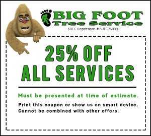 big foot tree service 25% off coupon