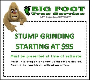Oakland, NJ Stump Grinding Coupon
